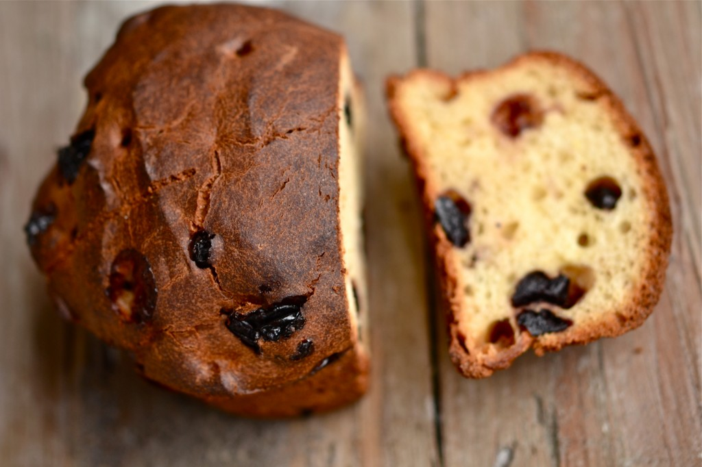 Gluten Free Christmas Panettone Bread