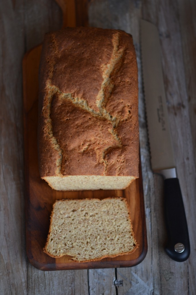 The BEST gluten-free bread