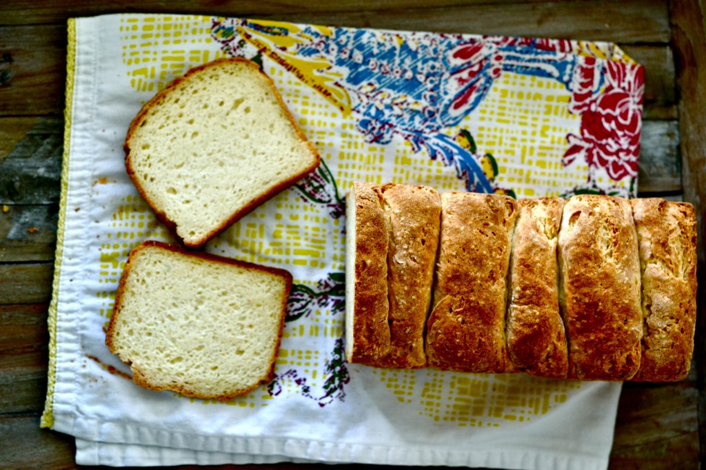 Gluten-Free Japanese Milk Bread – the softest bread ever