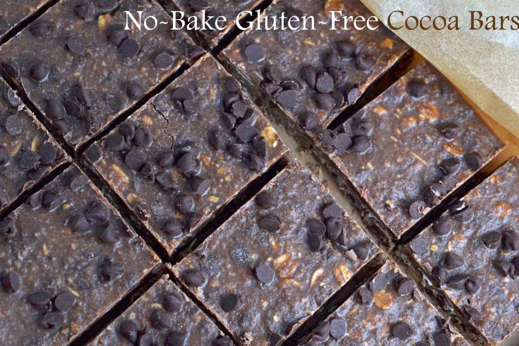 No-Bake Cocoa Bars