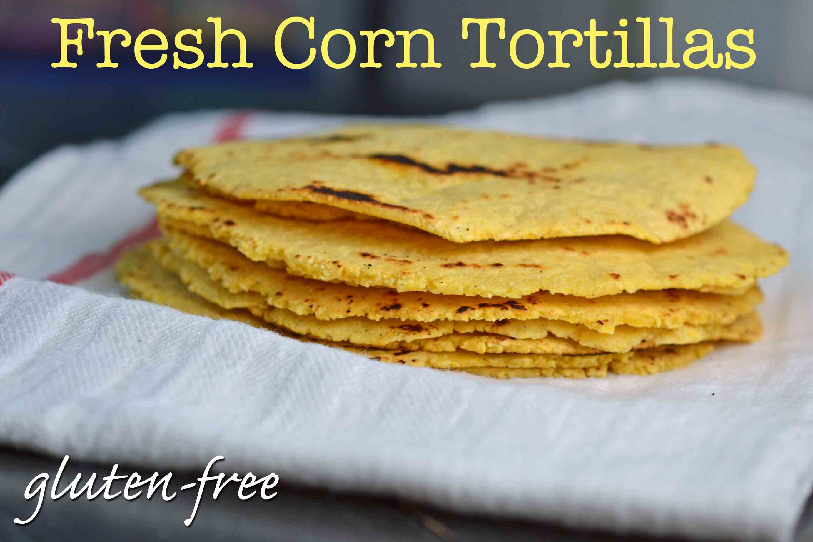Fresh Gluten Free Corn Tortillas - Great gluten free recipes for every ...