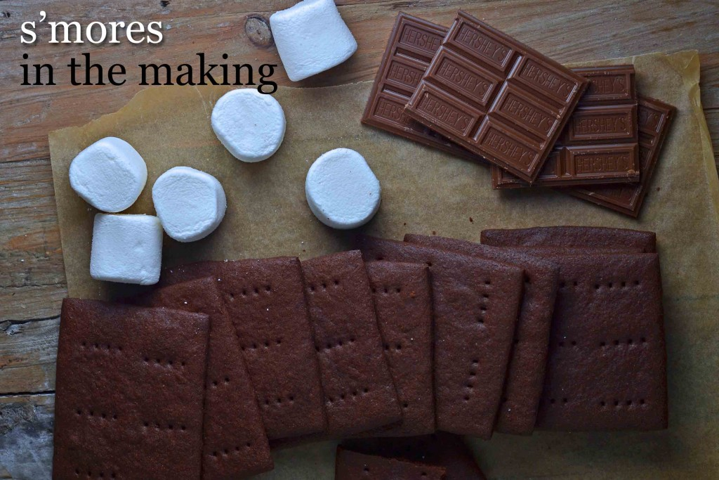 Homemade Chocolate Graham Cracker S'mores Recipe — Dishmaps