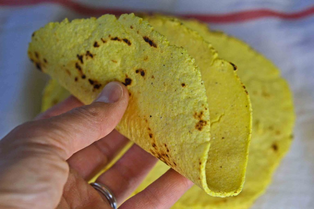 Fresh Gluten Free Corn Tortillas - Gluten Free on a Shoestring