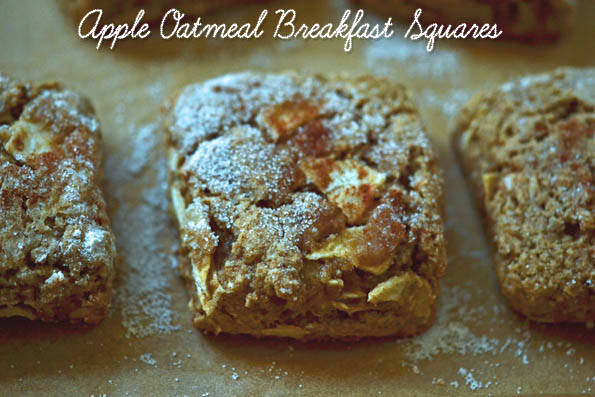 Apple Oatmeal Breakfast Squares