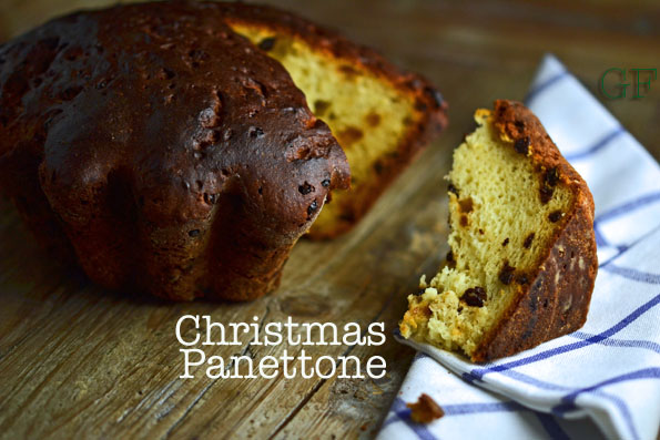 Italian Yeast Cake Recipes: Gluten-Free Christmas Panettone Bread II