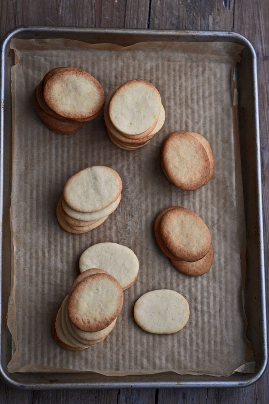 Gluten Free Vanilla Wafer Sandwich Cookies