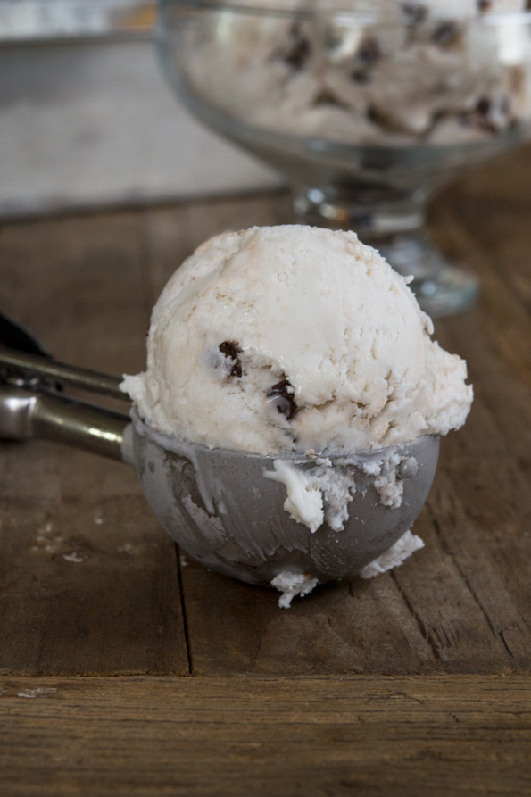 Gluten Free Dairy Free Coconut 3-ingredient Ice Cream (No Machine!)