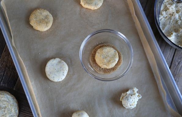 recipe: gluten free lemon poppy seed cookies [38]