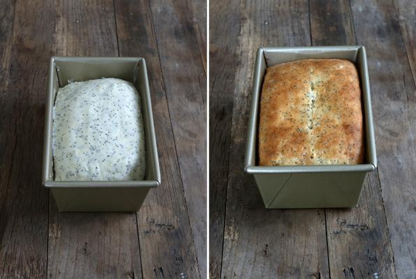 Gluten Free Lemon Poppyseed Bread - Gluten Free on a Shoestring