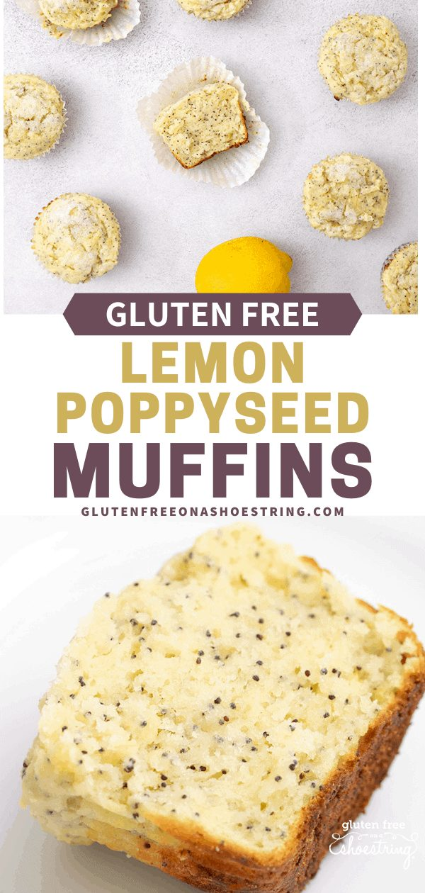 Lemon Poppyseed Muffins in an array overhead, and one single half muffin on a white plate
