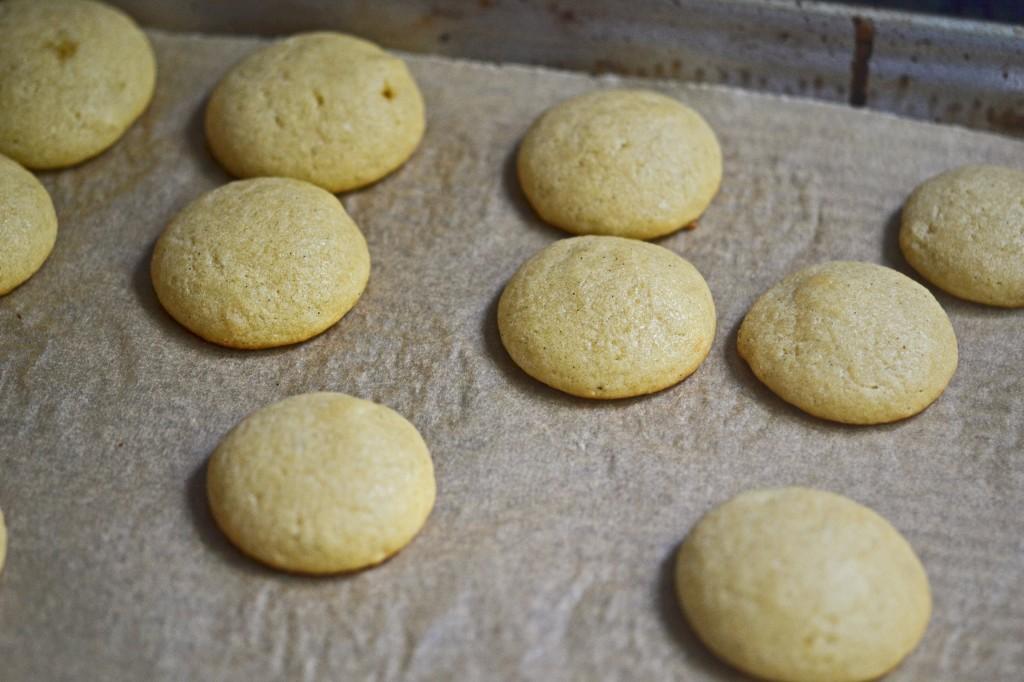 Vanilla cookies on white surface