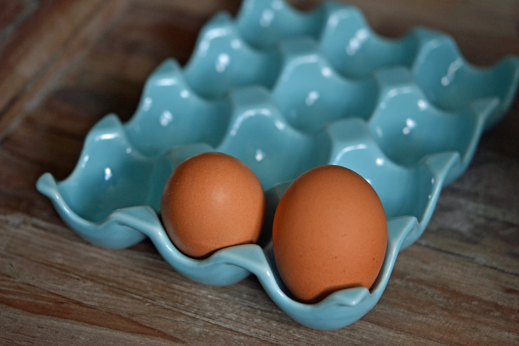 2 eggs in blue tray
