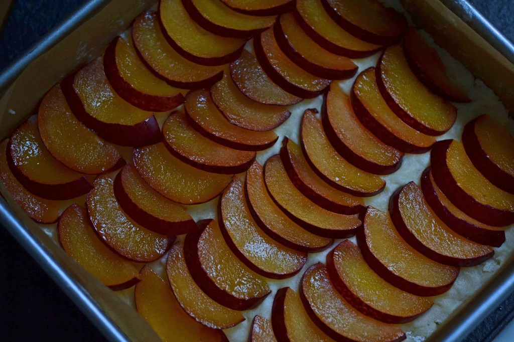 Rows of sliced plums
