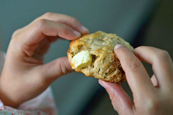Close up of a Person holding apple breakfast cookie