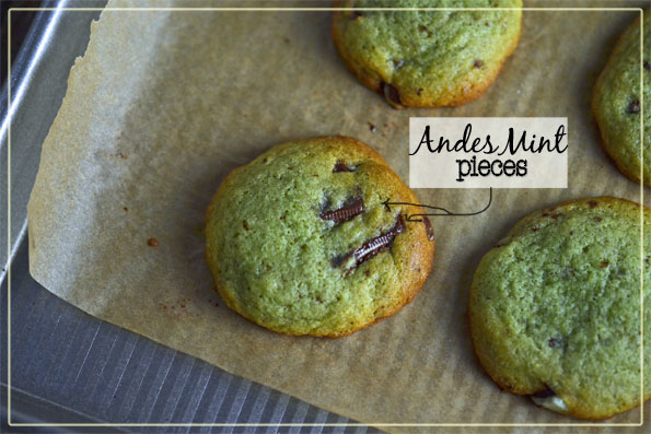 A close up of 3 mint chocolate chip cookies