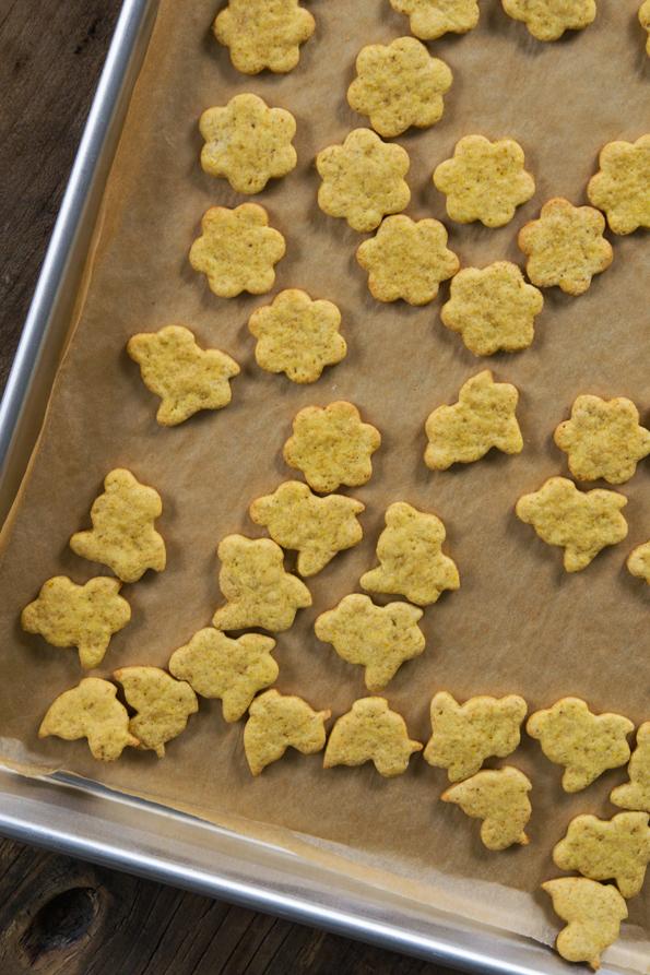 Gluten Free Pumpkin Animal Crackers