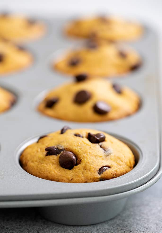 Pumpkin chocolate chip muffins baked in muffin tin
