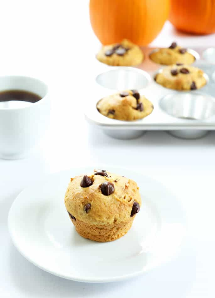 A small pumpkin chocolate chip muffin on a white plate