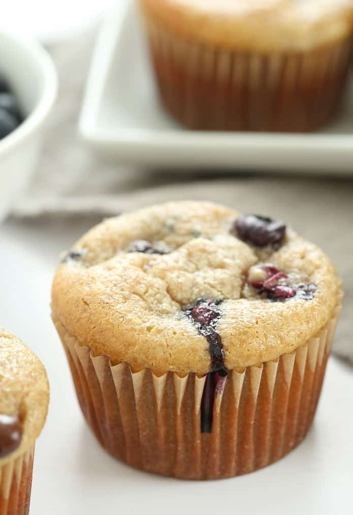 Moist and tender Paleo muffins made completely flourless with cashews, applesauce, eggs and honey. Add your favorite mix-ins, like blueberries or chocolate chips!