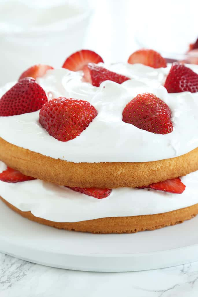 close up of a sponge cake with 2 stacks on a white plate