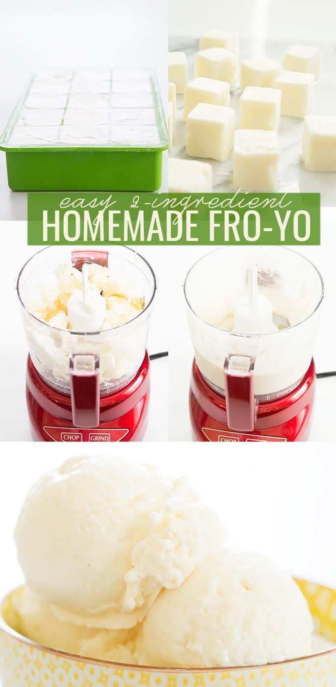 Frozen yogurt in food processor