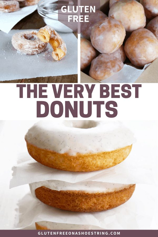Ten gluten free donuts for every taste and appetite. From baked to fried, cake to yeasted, chocolate to vanilla and cinnamon.