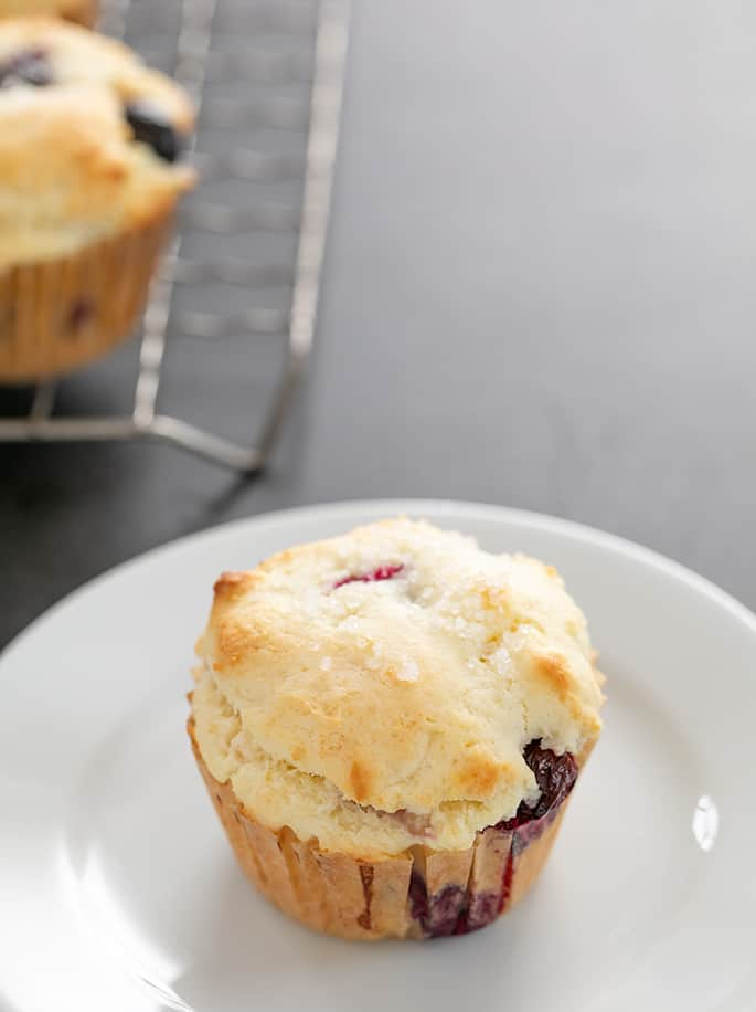 Image of bakery-style gluten free blueberry muffins pictured on a plate for serving