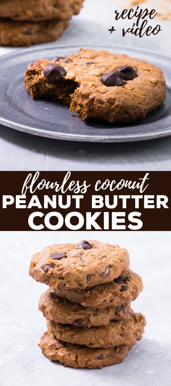 These flourless coconut peanut butter cookies are low in sugar, packed with protein and take just minutes to throw together. They're naturally grain-free and dairy-free, too! #dairyfree #grainfree #glutenfree #flourless