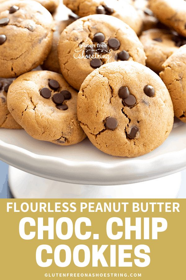 This recipe for flourless peanut butter chocolate chip cookies, with only 6 simple ingredients, makes perfectly soft and chewy cookies. You'll never believe they have no flour! #flourless #peanutbutter #cookies #glutenfreerecipes