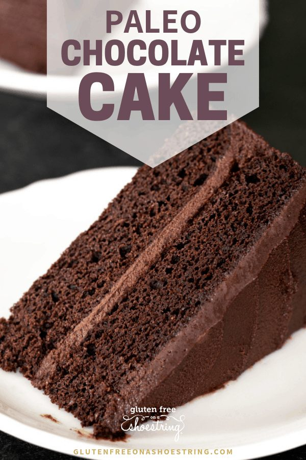 A moist and tender Paleo chocolate cake that's rich in chocolate flavor, but not too sweet. Layer it with a deep chocolate frosting, and let's celebrate! #paleorecipes #chocolatecake #glutenfree #dairyfree #birthday