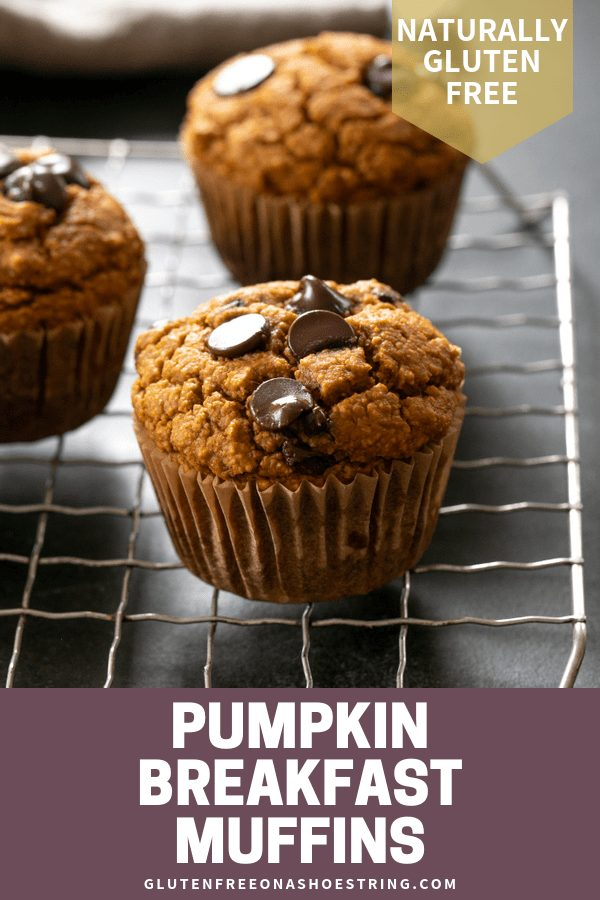 These healthy pumpkin breakfast muffins, with just a few chocolate chips, are freezer-friendly, lightly sweet, and naturally gluten free. Make a double batch!