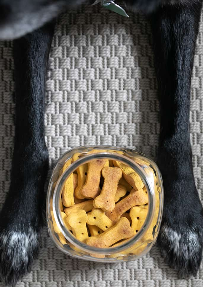 Image of jar of crunchy gluten free dog treats with a dog's paws on either side.