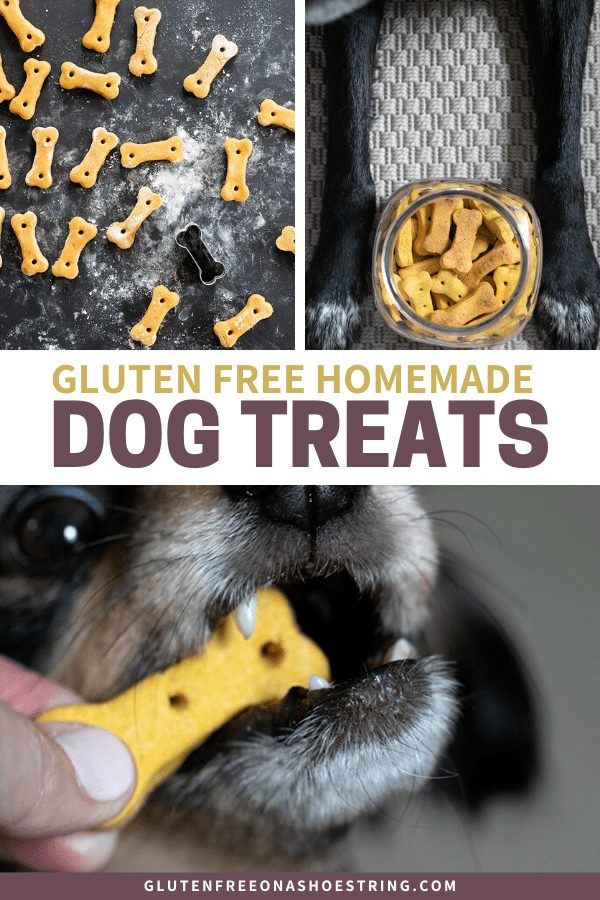 Image of crunchy gluten free dog treats raw, baked and being eaten by a dog.