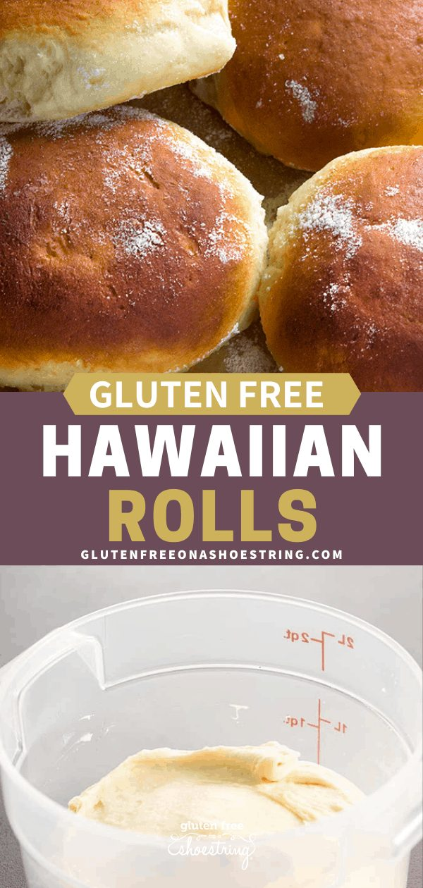 Gluten free Hawaiian rolls baked on a tray and raw dough in a proofing bucket.